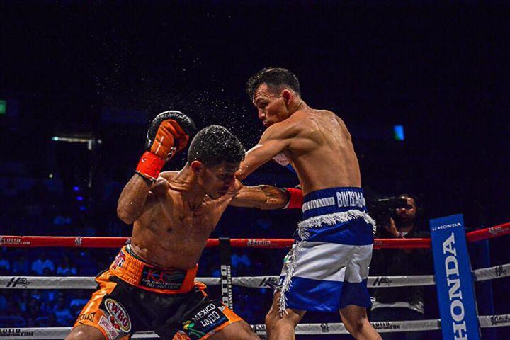 acosta-buitrago-fight (10)
