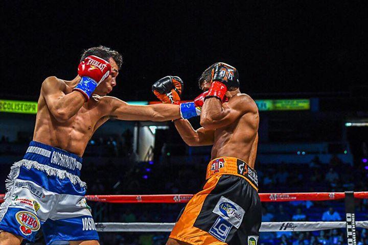 acosta-buitrago-fight (4)