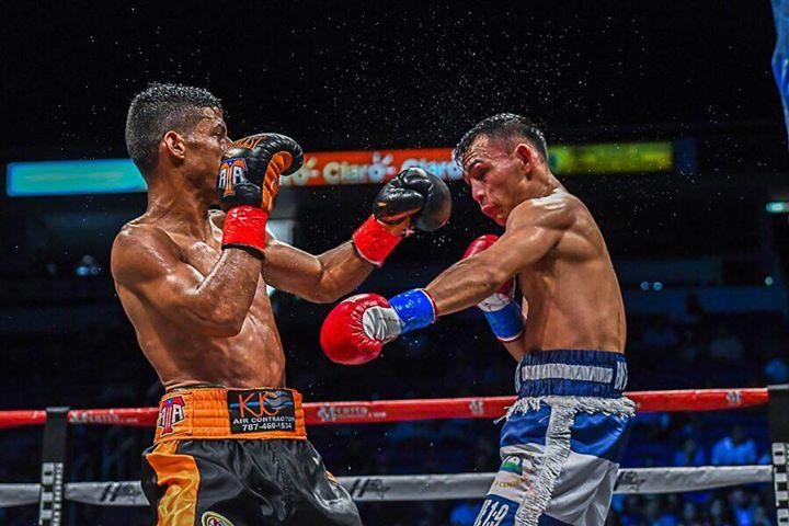 acosta-buitrago-fight (7)