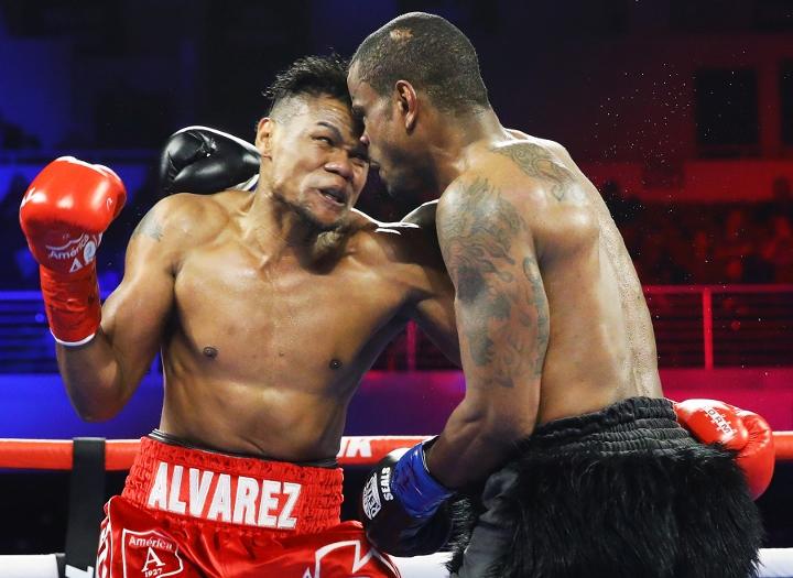 alvarez-seals-fight (2)