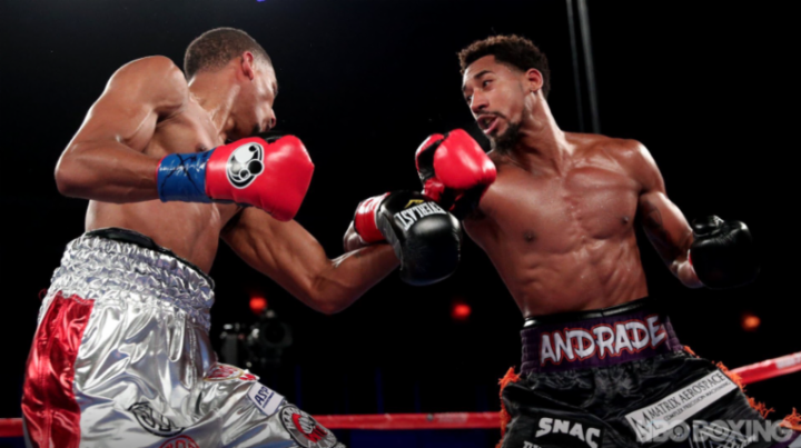andrade-fox-fight