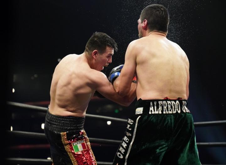 angulo-hernandez-fight (19)