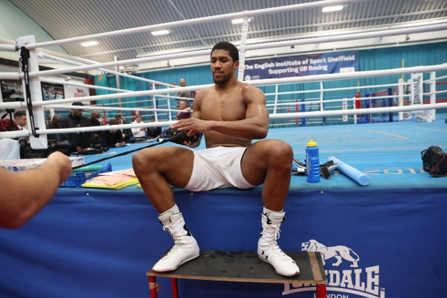 anthony-joshua (17)_1