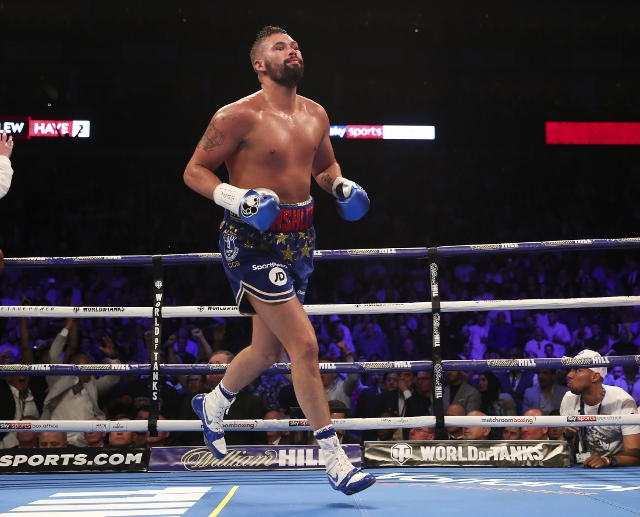 bellew-haye-rematch (29)