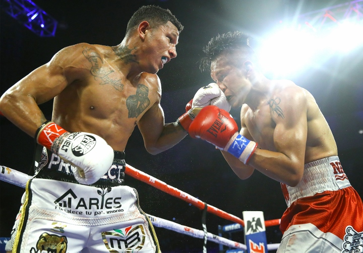 berchelt-vargas-rematch (11)