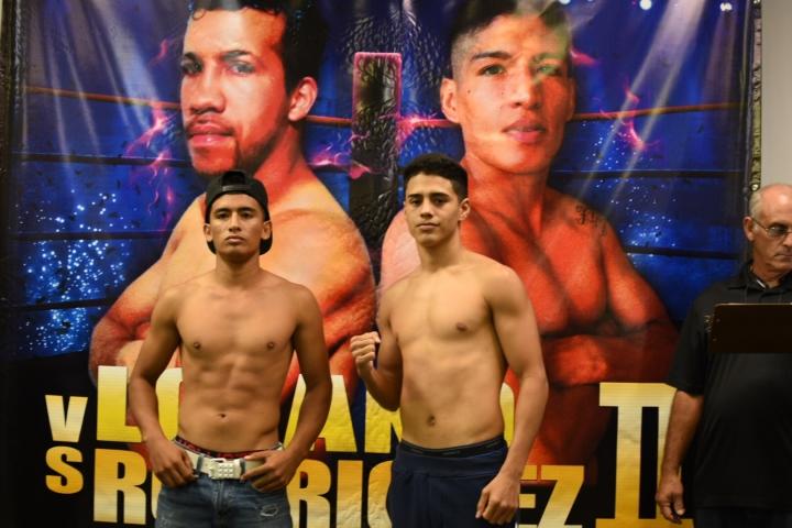 boxeo-telemundo (4)