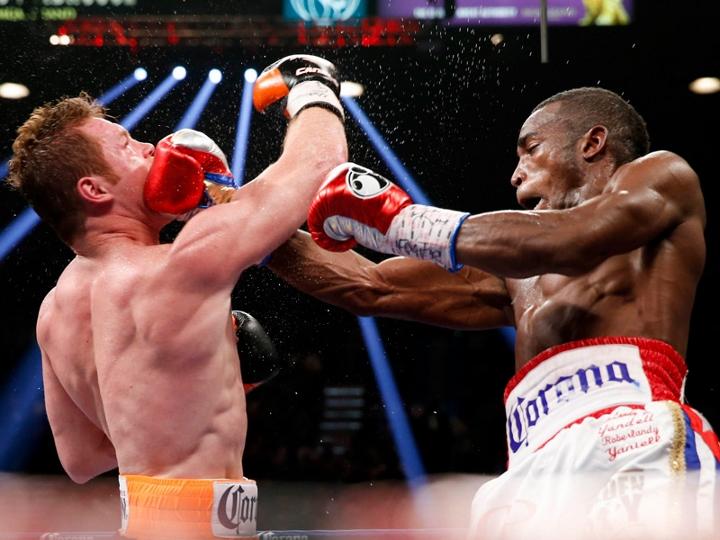 canelo-lara-fight (3)