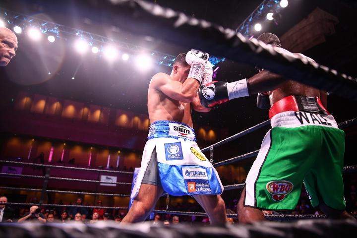 castano-omotoso-fight (13)