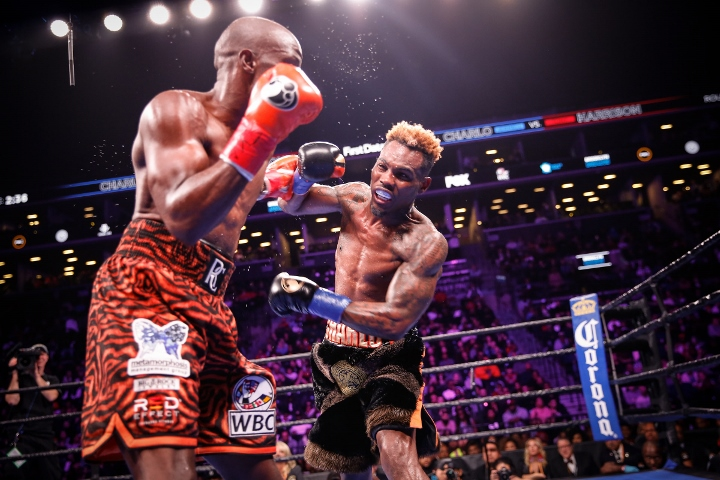 charlo-harrison-fight (9)