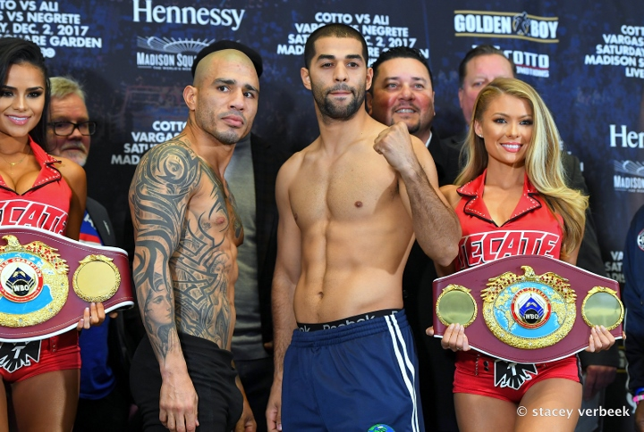 cotto-ali-weights (3)