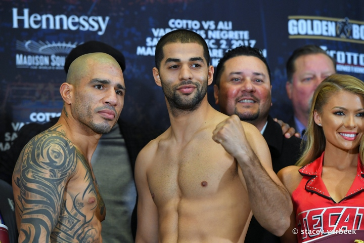 cotto-ali-weights (4)