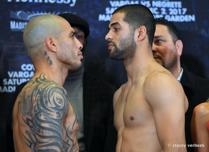 cotto-ali-weights (7)