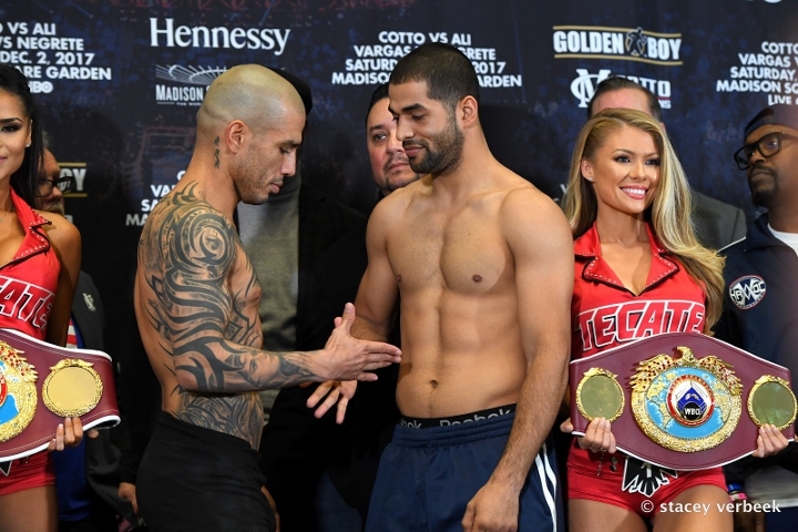 cotto-ali-weights (8)