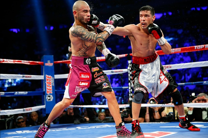 cotto-martinez-fight (4)