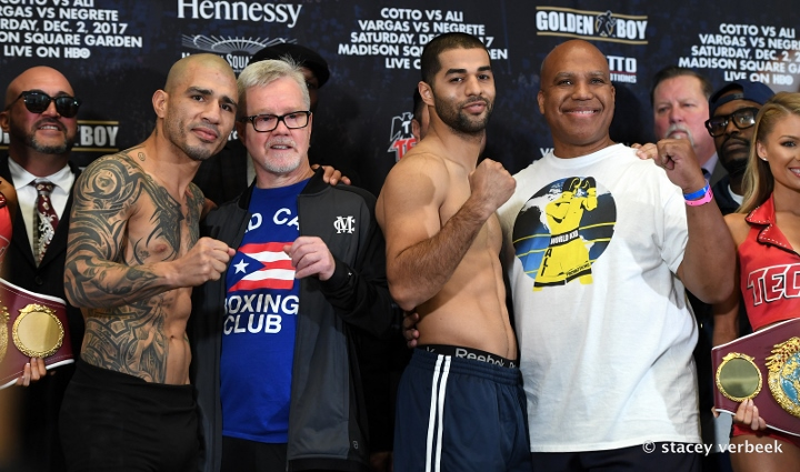 cotto-roach (1)