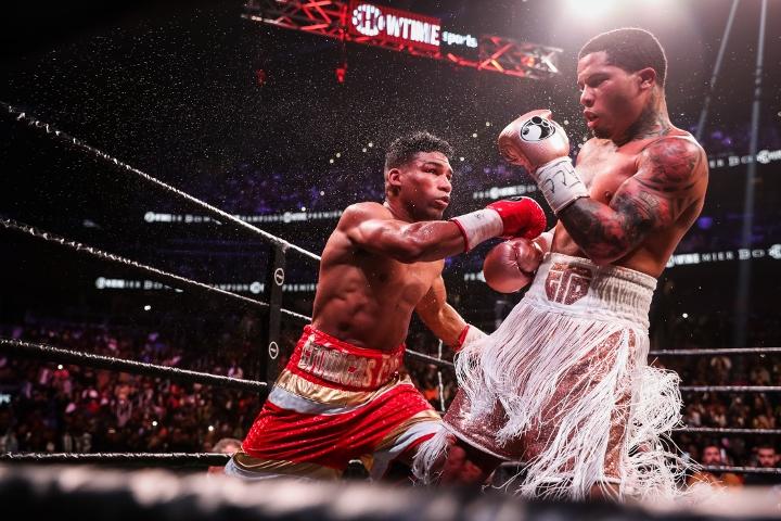 davis-gamboa-fight (11)