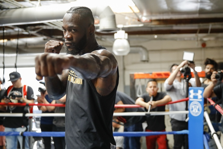 WBC President Confirms Wilder, Fury Rematch On Hold