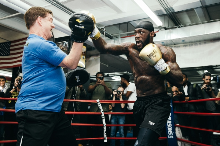 Deontay Wilder Knocked Dominic Breazeale The F*ck Out, Twitter Reacts