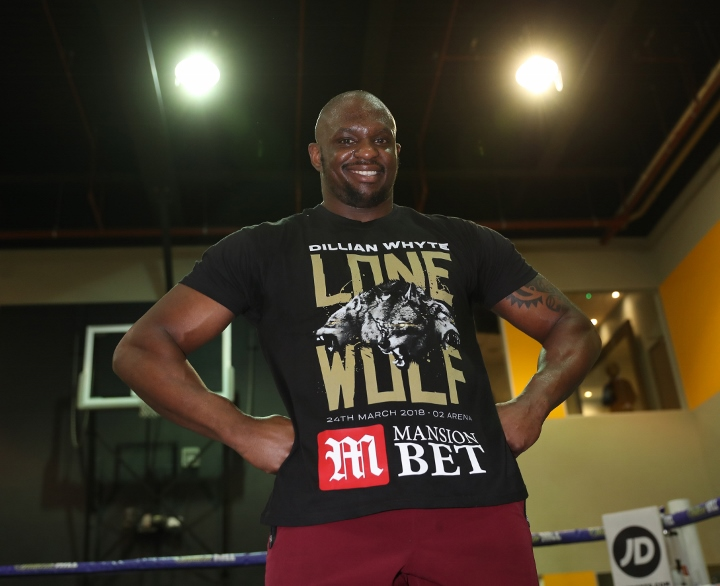 dillian-whyte (3)_1