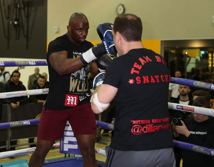 dillian-whyte (6)_1
