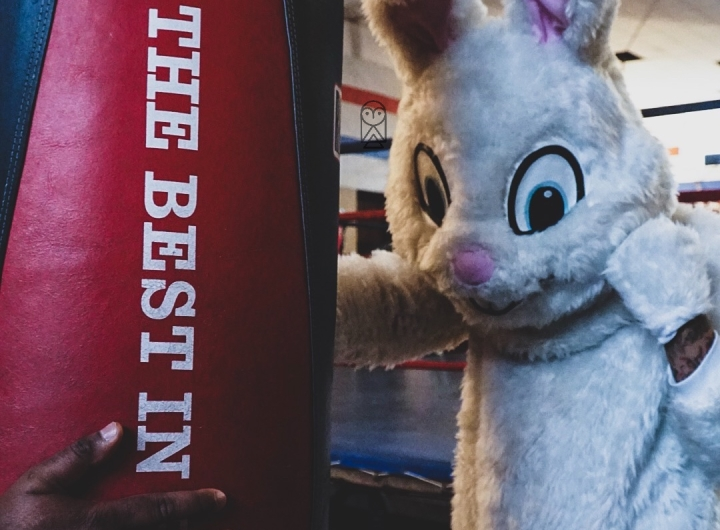 easter-bunny-boxing (1)