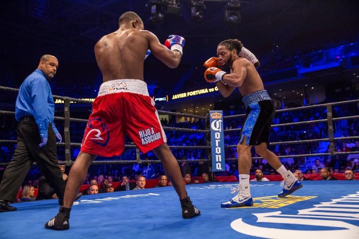 fortuna-douglas-fight (2)