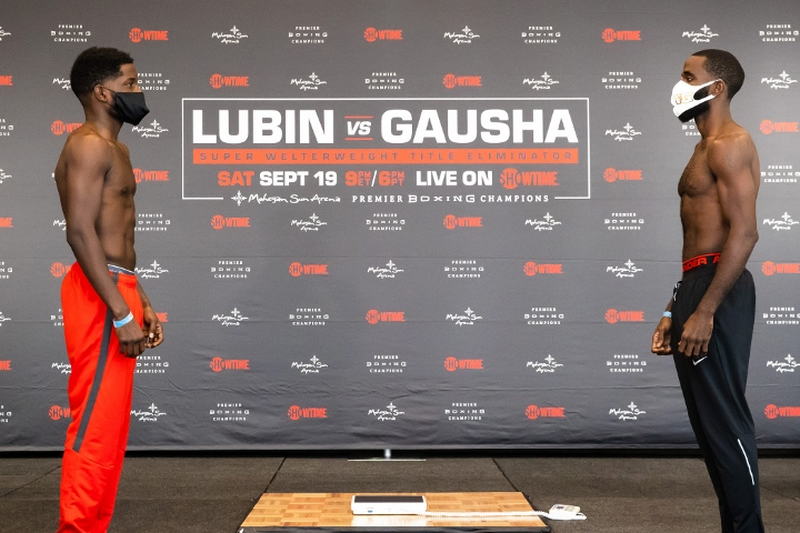 lubin-gausha (2)