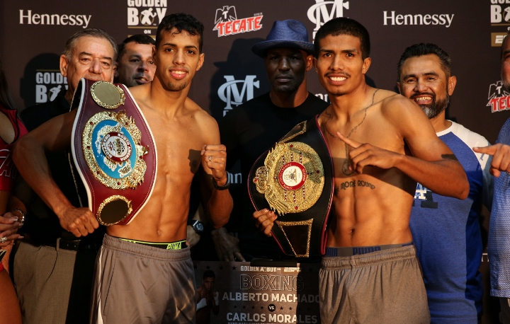 machado-morales-weights (5)