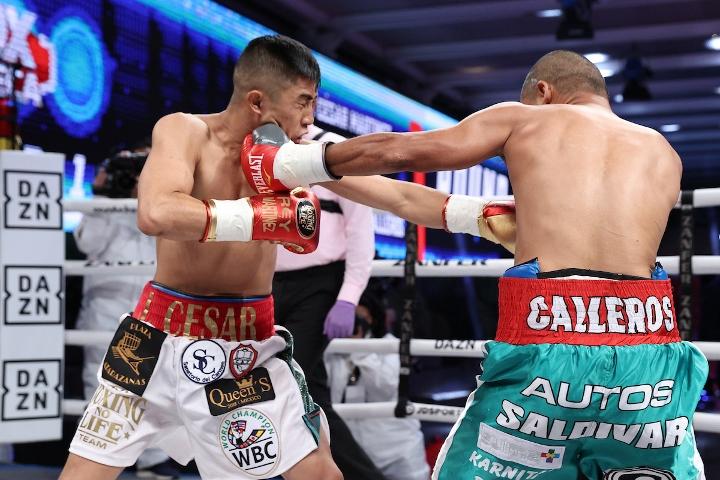 martinez-calleros-fight (1)