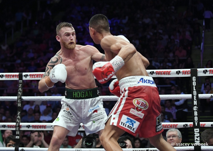 munguia-hogan-fight (14)