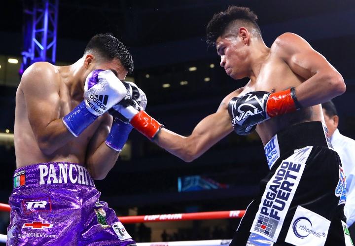 navarette-de-vaca-fight (8)