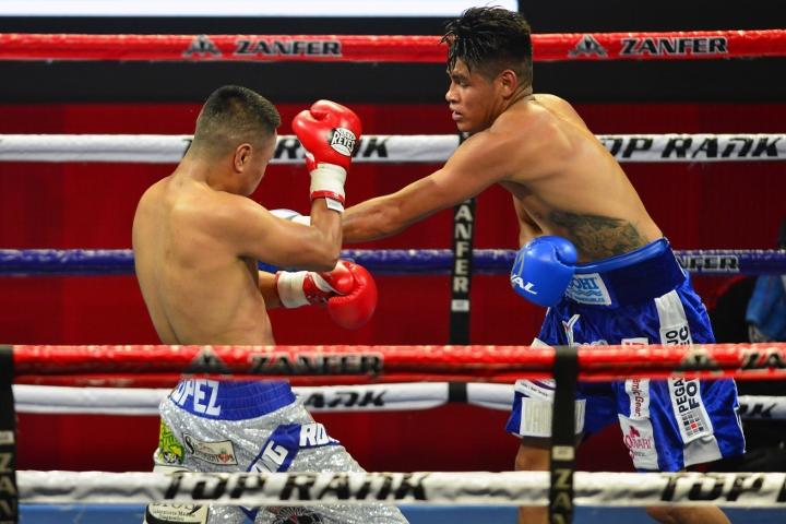 navarrete-lopez-fight (10)