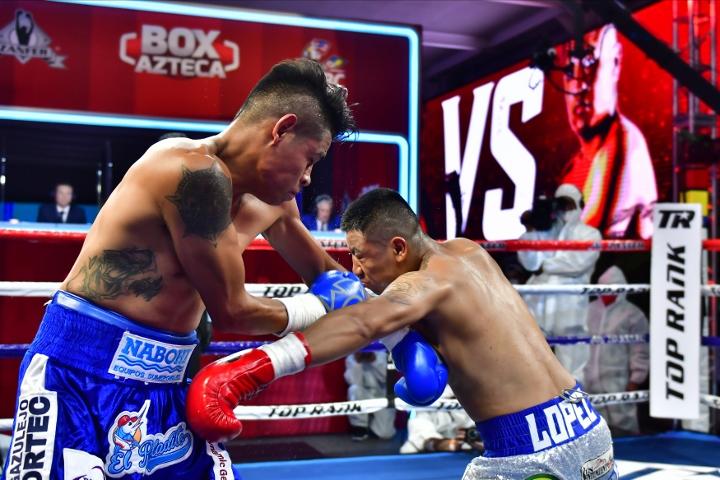 navarrete-lopez-fight (15)