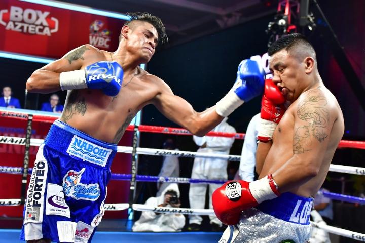 navarrete-lopez-fight (5)