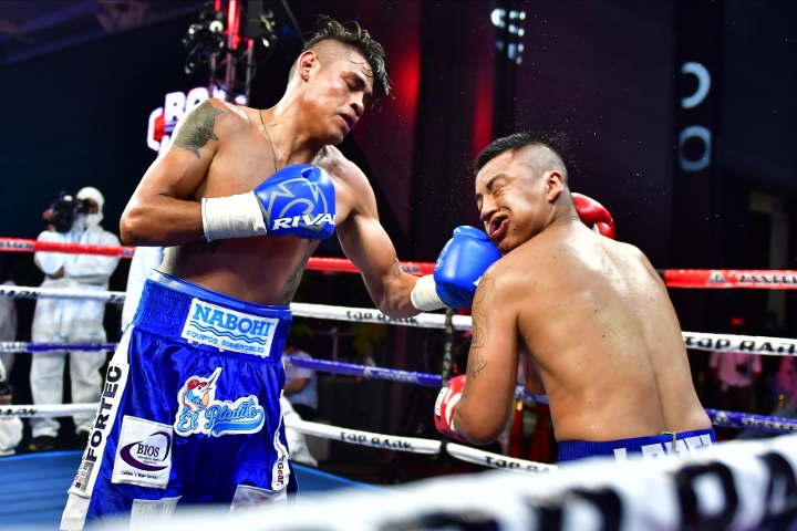 navarrete-lopez-fight (6)