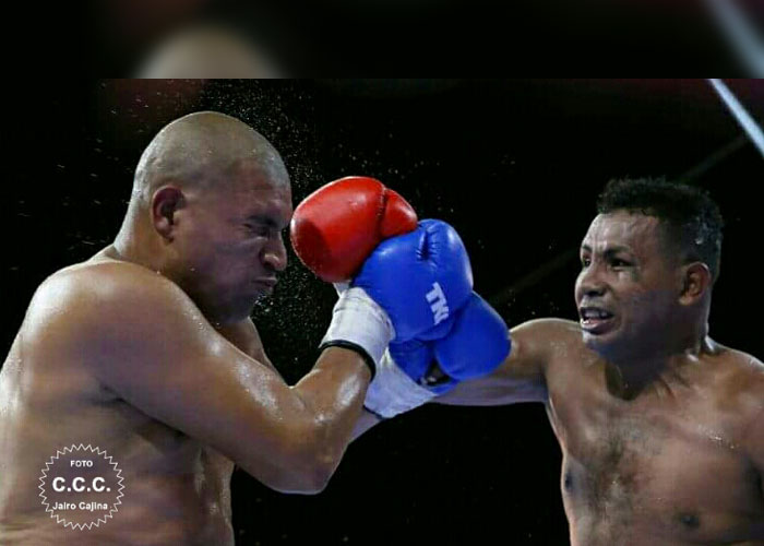 ricardo-mayorga-zepeda-fight (13)