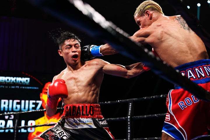 rodriguez-gaballo-fight (11)