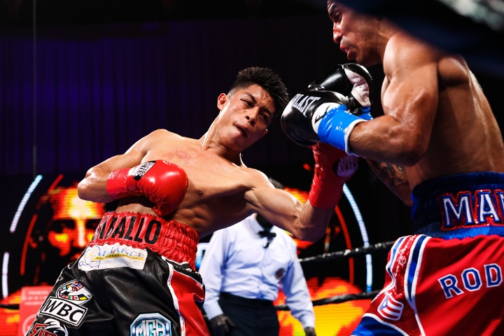 rodriguez-gaballo-fight (19)