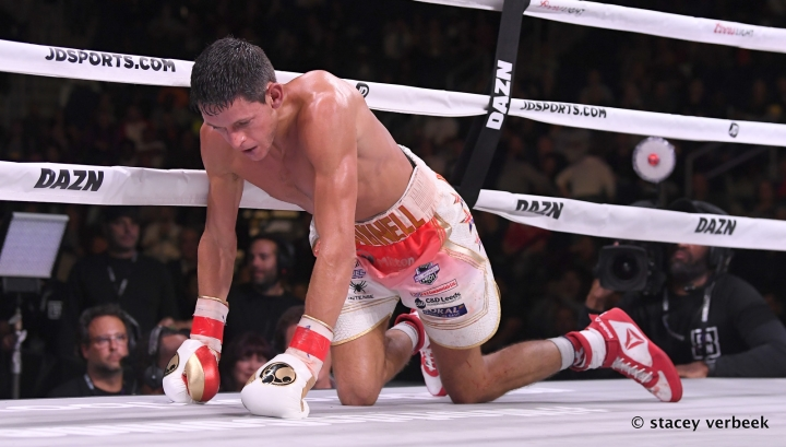 roman-mcdonnell-fight