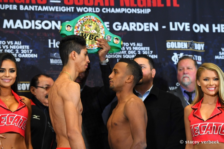 vargas-negrete-weights (1)
