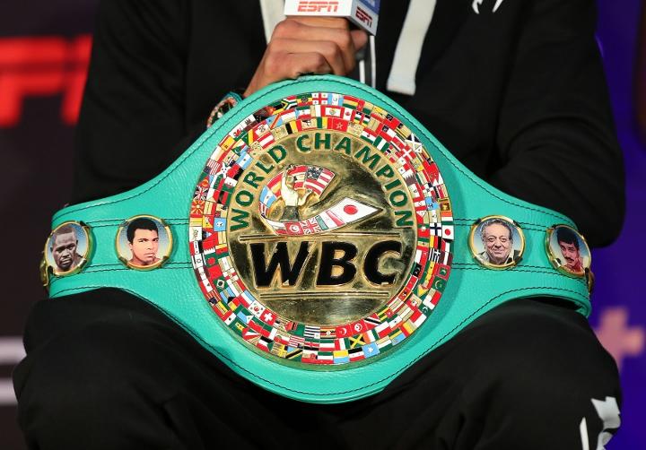 wbc-belt_1