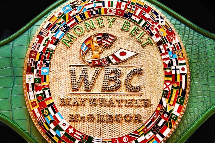 wbc-money-belt (2)