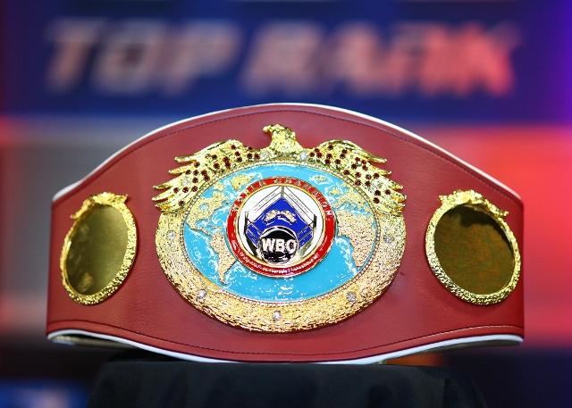 wbo-belt (2)