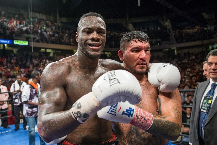 wilder-arreola-fight (5)_1