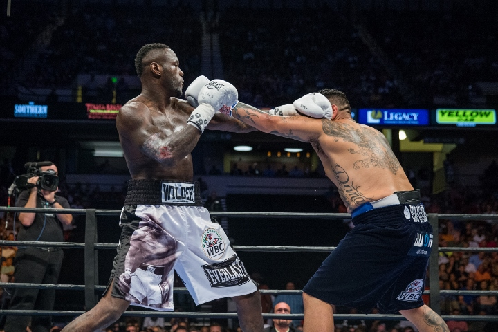 wilder-arreola-fight (8)