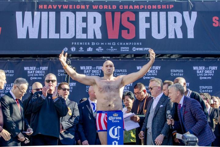 wilder-fury-weights (4)