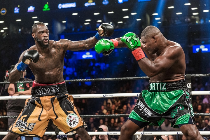 wilder-ortiz-fight (36)