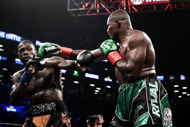 wilder-ortiz-fight (60)