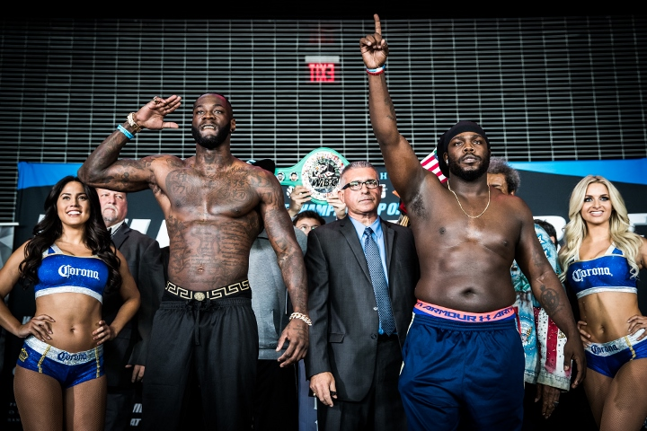 wilder-stiverne-weights (9)